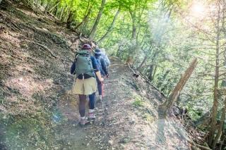 高低差が消費カロリーを増やす! 登山でダイエット
