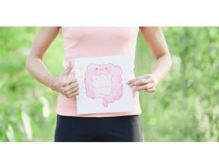 腸のイラストを持った女性