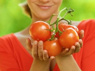 トマトを手に持っている画像