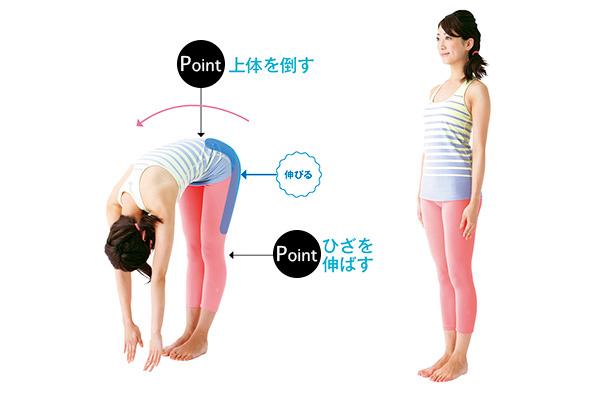 腰痛予防に効果あり!筋肉が目覚めるPNFストレッチ