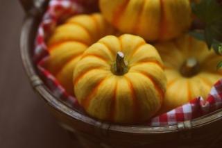 ダイエット中でもぜんぜんOK! かぼちゃの太らない食べ方