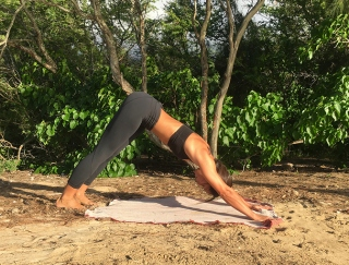 1ポーズで全身を鍛えてゆがみも整える!  Yogaの基本かつ最強ポーズ