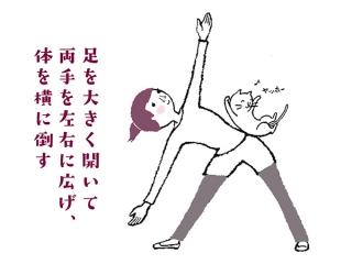 体幹部を鍛えるポーズのイラスト