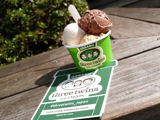 カップにアイスクリームが3つ入っている