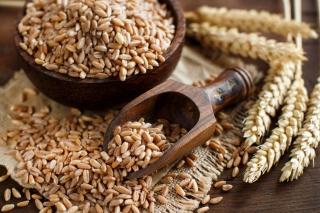 新たな穀物ブームの仲間入り?スペルト小麦(ファロ)を食べてみた!