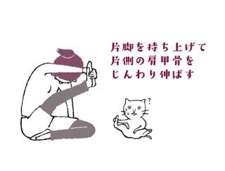 【今日のねこストレッチ】鍛えにくい背中に効かせる!肩甲骨を伸ばすポーズ
