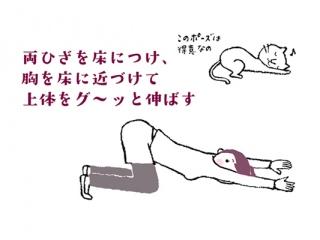 肩甲骨&ろっ骨を伸ばすポーズ
