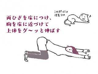 【今日のねこストレッチ】上半身がスッキリ!肩甲骨&ろっ骨を伸ばすポーズ