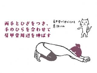 【今日のねこストレッチ】上半身びろ~ん!肩甲骨を伸ばすポーズ