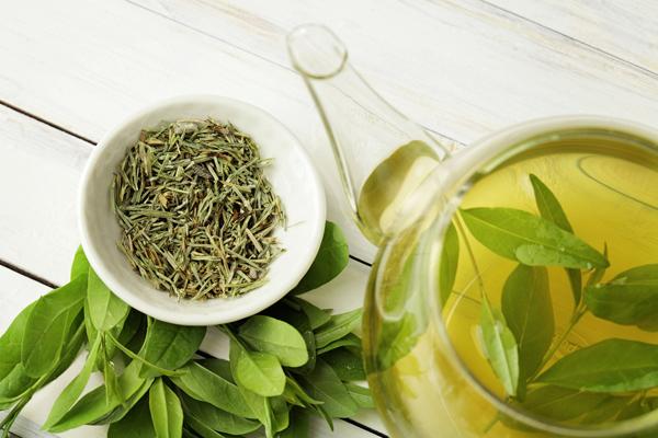 飲むだけで嬉しい効果!奇跡の飲み物と呼ばれる「緑茶」のすごさ