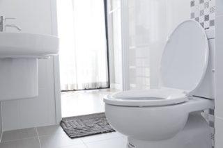 「ほぼ透明」や「茶褐色」は要注意! 尿の色は健康を表すバロメーター