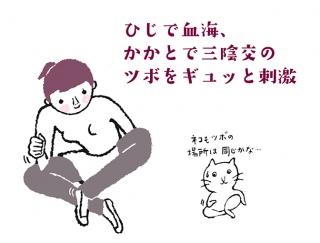 【今日のねこストレッチ】冷房冷えでパンパンにむくんだ足を解消!