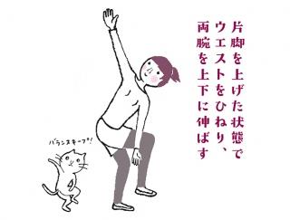 【今日のねこストレッチ】ウエストをキュッと引き締めて憧れのくびれをGET!