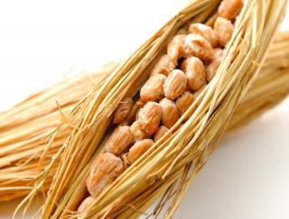 納豆はどれくらい混ぜるのがベスト? 医学的に正しい食べ方でナットウキナーゼの効果を最大限に