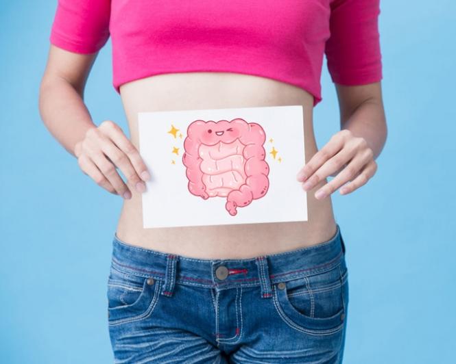 お腹の前で腸のかわいいイラストを抱えた女性の画像