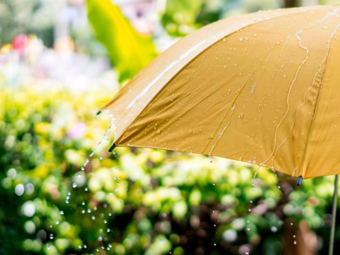傘に雨が落ちるようす