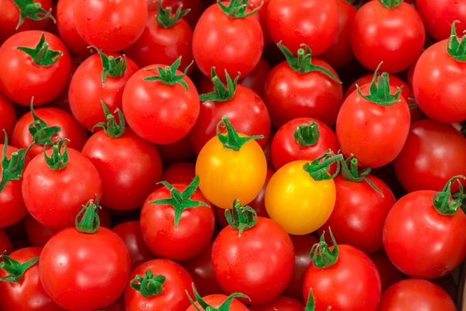 大量に敷き詰められたトマトの画像