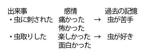 セルフイメージの例