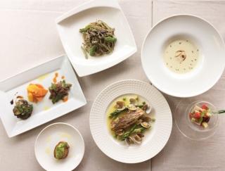 今月新オープンの箱根・強羅新形態ホテル『ビオテラス オルガニカ箱根』でのマクロビフレンチ体験レポ