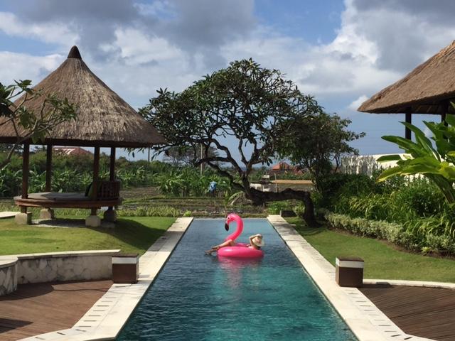 『ザ・サマタ』のプールとピンクフラミンゴ