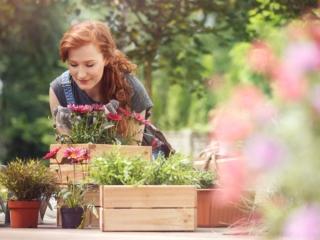 庭の花壇に目をやる女性の画像