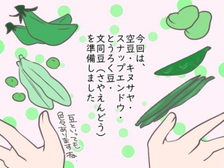 麹甘酒のイラスト
