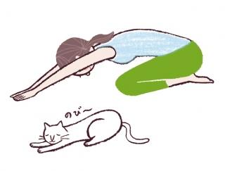 【今日のねこストレッチ】お疲れモードな日は、ねこの伸びポーズでリフレッシュ!