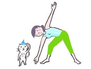 【今日のねこストレッチ】お腹を引き締め、くびれをとり戻す!三角形のポーズ