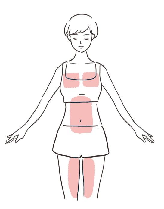 鍛えるべき筋肉のイラスト体の前側編