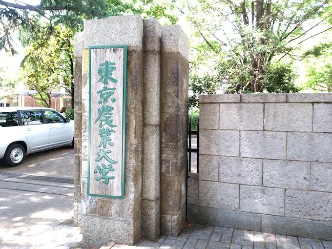 東京農業大学の門の画像