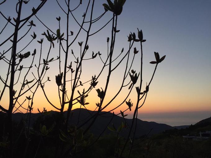 ビオテラスオルガニカ箱根から見る朝日