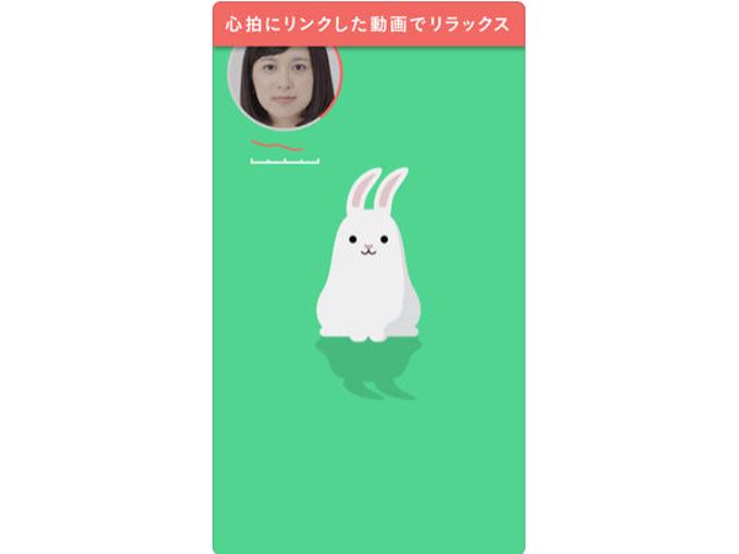 ムービーに登場したウサギの画像