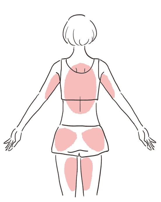 鍛えるべき筋肉のイラストうしろ姿編