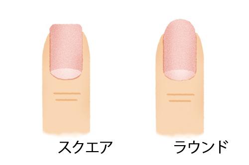 爪の形「スクエア」「ラウンド」のイラスト