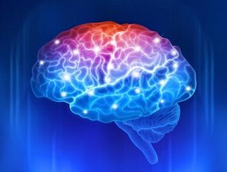 高齢者にはスーパーマリオがおすすめ!? 脳の健康に関わる驚きの最新学説