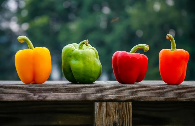赤、緑、黄色、オレンジのピーマンが並ぶ
