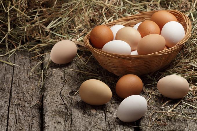 卵をイメージした画像
