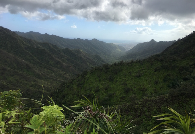 ハワイの山