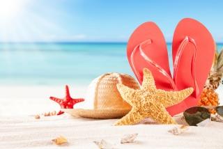 浜辺に置いてあるサンダルと麦わら帽子とヒトデの画像