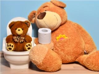 トイレのおもちゃとくまのぬいぐるみ