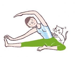 【今日のねこストレッチ】15秒キープでくびれボディへ!わき腹&脚に効かせるポーズ