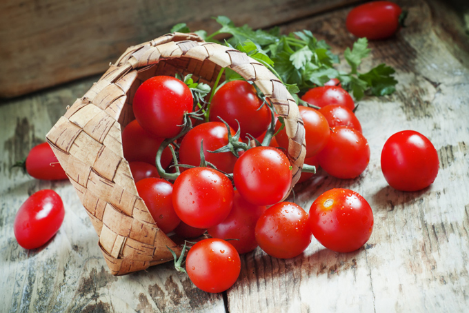 お皿に入った大量のプチトマトの画像