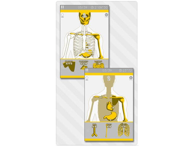 「人体模型パズル」は名前のとおり、内臓と骨の位置をジグソーパズル感覚で学習できるアプリ。学校の理科室で見かけた懐かしの人体模型に、パーツを次々とセットしていきます。 アプリを起動したら、まずは「ビュー」画面をチェックするのがおすすめ。「気管」「食道」「肺」など各パーツのシルエットと位置が確認できるので、パズルを開始する前にザッと目を通しておくといいですね。