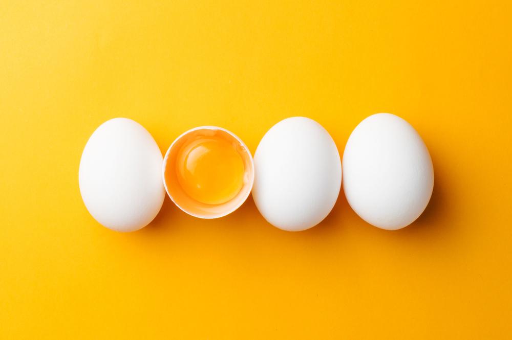 卵が並んでいる
