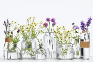 花瓶に入った花