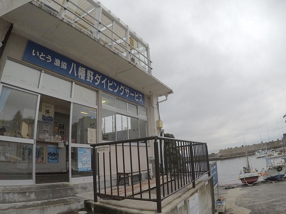 ダイビングサービス