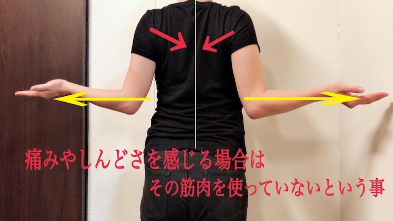 後ろから見た肩の体操