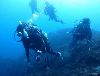 ついに海へ!「PADI」の海洋実習でダイビングライセンスを取得 #Omezaトーク