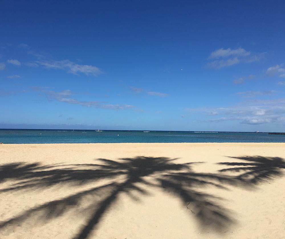 ハワイの青い海と空、砂浜にヤシの木の影