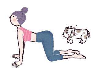 「朝ヨガ」でモ~っとやせやすい体に!代謝を上げる牛のポーズ #今日のねこヨガ